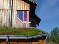 Dächer und Fassaden sollen grüner werden
