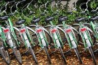 Stadtverwaltung bereitet Fahrradverleihsystem vor