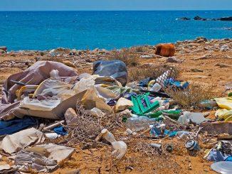 Plastikmüll im Meer: Jeder Zweite in Deutschland gibt sich selbst die Schuld