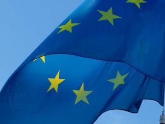 Umfrage zur Europawahl: Umweltschutz Topthema für die Wählerinnen und Wähler