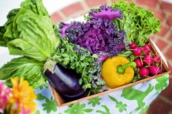 Klimafreundliche Schritte zu einer gesunden Ernährung – regional, saisonal und biologisch