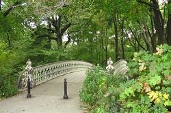 Cool bleiben: Citynahe grüne Schattenplätze laden zum Verweilen ein