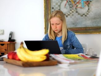 Lernplattform schulen-hannover.de