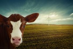 Zukunftskommission Landwirtschaft: Ein erster Schritt zur großen Transformation