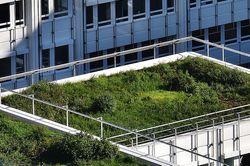 Fassadensanierung und Innenhofbegrünung: Mit Zuschüssen die Wohnqualität steigern